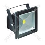 Eagle Waterproof IP65 Black Flood Lights - Lamp Type 30W LED