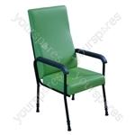 Longfield Lounge Chair - Colour Green
