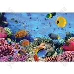 1000 Piece Jigsaw Puzzle - Design Coral Reef