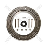 Briggs & Stratton Engine Lawn Mower Flywheel Ring Gear Kit