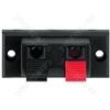 Push Terminal - Spring-loaded Speaker Terminal, 2 Poles