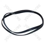 New World 'belt Poly-v 1194j5 '