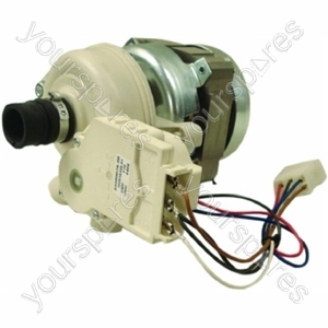 Wash Motor/pump Assy 240v-75w Held