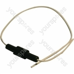 Hotpoint WD61U Washing Machine Fuse & Lead Assembly